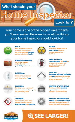 What should your home inspector look for? Infographic