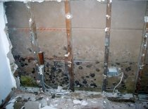 Can my contractor do mold?