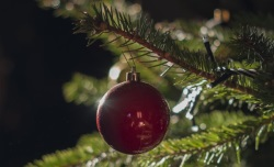 Christmas Tree Care and Safety